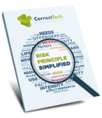 Risk Principle Simplified eBook from CorrectTech