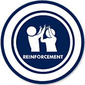 Evidence Based Practices - Reinforcement